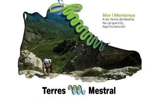Pla de comunicació on-line Terres de Mestral i posada en marxa portal web