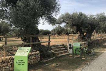 Creació i ampliació de les rutes de cicloturisme per les oliveres mil·lenàries del territori Sènia
